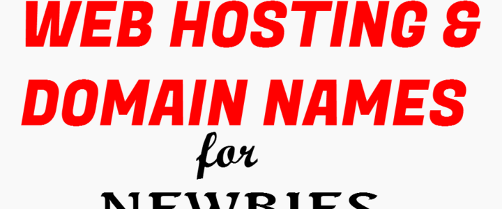 Introduction To Web Hosting And Domain Names For Newbies